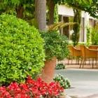 Hotel Balneari Prats - 93441-33360575.jpg