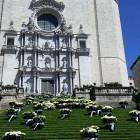 foto de Guided tour: Girona flower festival